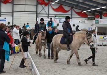 Promotie Paardensport Gehandicapten